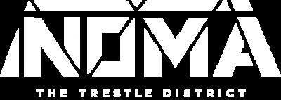 NOMA_logofinalwhite (2)